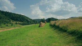 Ordinary Carpathian landscape with haystacks stock video footage