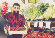 Ordinary man seller offering tomatoes in shop Stock Images