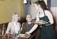 Ordinary mature couple having dinner. Portrait of nippy and ordinary happy mature couple having dinner Stock Images
