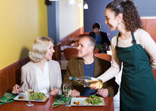 Ordinary mature couple having dinner. Portrait of nippy and ordinary smiling mature couple having dinner Royalty Free Stock Photos