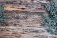 Ordinary old wooden boards with twigs of pine needles (Christmas tree), background for text, simple motif. Ordinary old wooden boards with twigs of pine needles royalty free stock photography