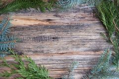 Ordinary old wooden boards with twigs of pine needles (Christmas tree), background for text, simple motif. Ordinary old wooden boards with twigs of pine needles royalty free stock photo