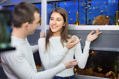 Ordinary positive customers selecting tropical fish Royalty Free Stock Photos