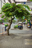 Ordinary street on the outskirts of Bangkok Stock Image