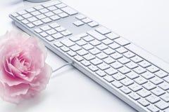 Ordinateur de Rose et de clavier Image stock