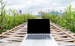 Ordinateur portable avec l'écran vide sur la route en bois en parc extérieur de nature images stock