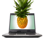 Ordinateur portable avec l'ananas photo libre de droits