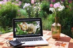 Ordinateur portable de photographes sur la table dans le jardin d'été de fleur Photographie stock