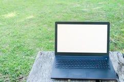 Ordinateur portable et herbe verte Images libres de droits