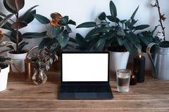 Ordinateur portable moderne personnel sur la table en bois avec de belles plantes vertes, intérieur de hygge, l'espace vide pour  images stock