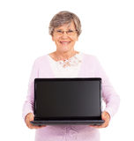 Ordinateur portable supérieur de femme Images stock