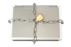 Ordinateur portatif dans les réseaux photographie stock libre de droits