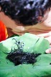 Ordination Ceremony  of Buddhist monk. Shaving the hair, Ordination Ceremony  of Buddhist monk Royalty Free Stock Image