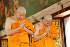 Ordination ceremony that change the Thai young men to be the new Stock Images