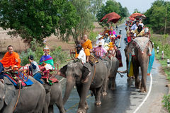 Ordination parade on elephant's back Festival. Royalty Free Stock Photos