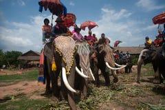 Ordination parade on elephant's back Festival. Stock Photos