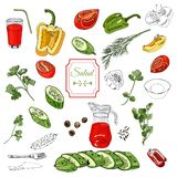 Ordinato delle verdure Peperoni rossi, verdi e gialli, pomodori, cetrioli e sopra inchiostro e gli elementi di colore differenti royalty illustrazione gratis