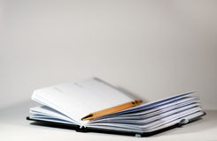 Ordine del giorno e penna Fotografia Stock