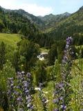Ordino berg, Andorra Royaltyfria Bilder