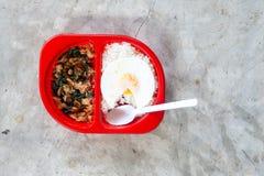 Ordna till för att äta kryddig thailändsk mat med ris och det stekte ägget i röd lunchask på konkret bakgrund arkivfoton
