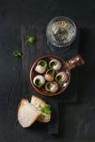 Ordna till för att äta Snigel de Bourgogne sniglar Royaltyfria Foton