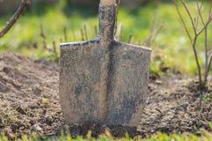Ordna till för att arbeta i trädgården royaltyfria bilder