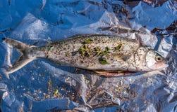 Ordna till för att baka den nya saltvattensfisken Fotografering för Bildbyråer