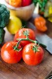 Ordna till för att laga mat tomater och grönsaker Royaltyfria Bilder