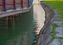 Ordnad sjökust och träbyggnad på pelare, closeup royaltyfria foton