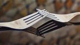 Ordnade äta middag gafflar med reflexion i exponeringsglas och suddig bakgrund royaltyfri fotografi