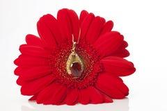 Ordning av blomman med ädelstenen arkivbilder