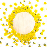Ordning av gula maskrosor som ram på trä Arkivbilder