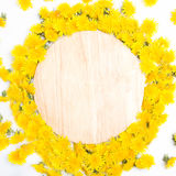 Ordning av gula maskrosor som ram på trä Arkivfoto