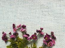 Ordning av konstgjorda blommor som lokaliseras på jutesäckvävbakgrund som är användbar som den easter bakgrund och vykortet Arkivbilder