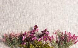 Ordning av konstgjorda blommor som lokaliseras på jutesäckvävbakgrund som är användbar som den easter bakgrund och vykortet Royaltyfri Foto