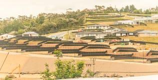 Ordning av landtäppor för konstruktion av privata hus i Nya Zeeland Arkivfoton