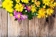 Ordning av nya blommor i en kruka Royaltyfri Bild