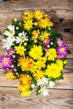 Ordning av nya blommor i en kruka Royaltyfri Fotografi