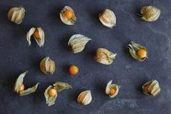 Ordning av physalisfrukt, uddekrusbär royaltyfri fotografi