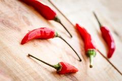 Ordning av röda chilipeppers Fotografering för Bildbyråer
