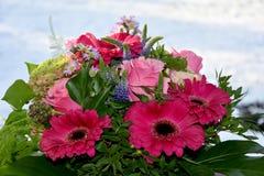 Ordning av rosa blommor Arkivfoton