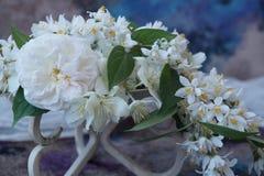 Ordning av vita blommor Arkivfoton