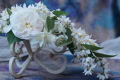 Ordning av vita blommor Fotografering för Bildbyråer