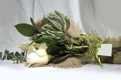 Ordning för vita rosor för valentin arkivfoto