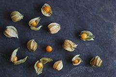 Ordningen av physalisfrukt, uddekrusbär, på naturligt kritiserar bakgrund royaltyfria foton