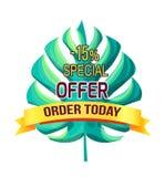 Ordre d'offre spéciale aujourd'hui avec 15 outre du logo de promo illustration libre de droits