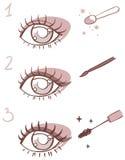 Ordre de maquillage d'oeil d'étapes Photo stock