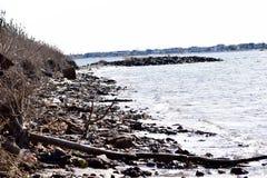 Ordures et débris sur la plage photo libre de droits