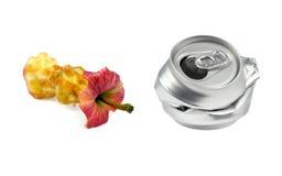 ordures La pomme mordue et la boisson écrasée peuvent Photographie stock