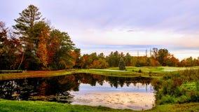 Ore del campo di golf di mattina fotografia stock libera da diritti